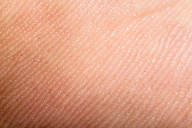 11-impactantes-datos-sobre-la-piel-humana-17
