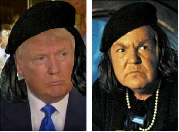 Cosas-y-objetos-que-se-parecen-a-Donald-Trump-25