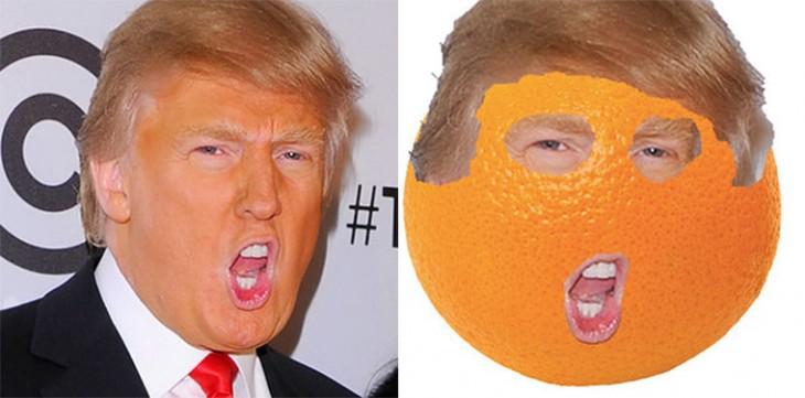 Cosas-y-objetos-que-se-parecen-a-Donald-Trump-27-730x361