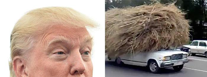Cosas-y-objetos-que-se-parecen-a-Donald-Trump-8