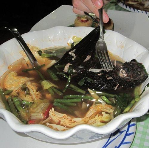 Sopa-de-murcielago