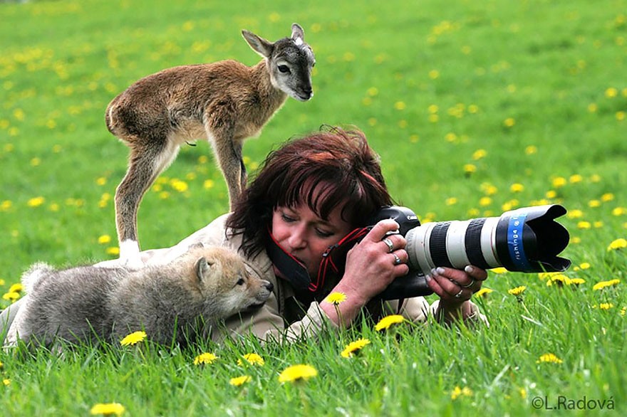 animals-with-camera-helping-photographers-7__880