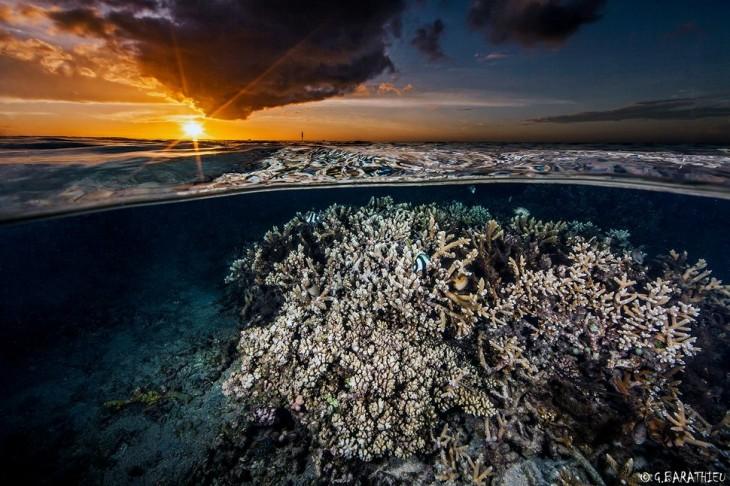 fotos-debajo-del-agua-18-730x486