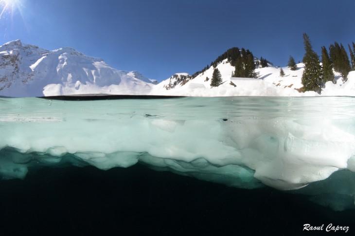 fotos-debajo-del-agua-28-730x486