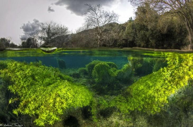 fotos-debajo-del-agua-4-730x483