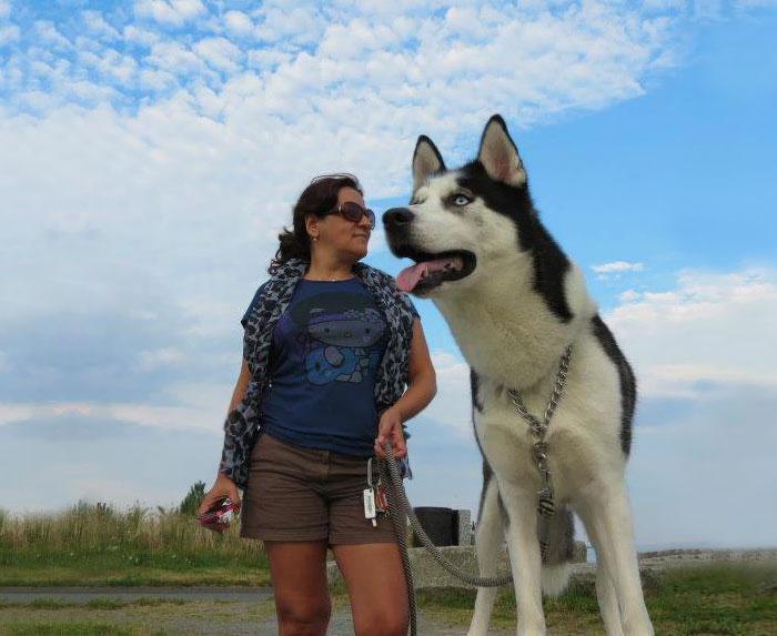 giant-dog-photo-optical-illusion-2__700