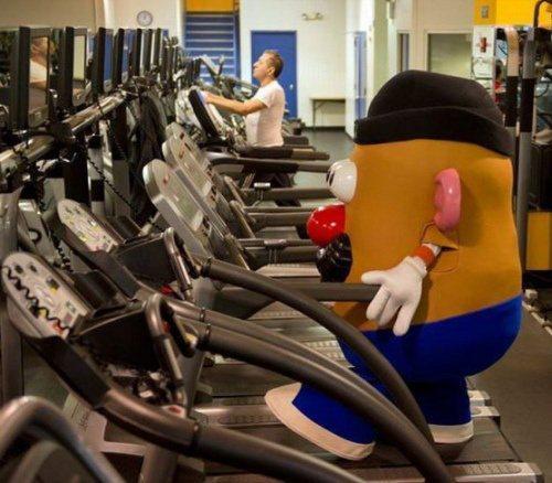 botarga-gym