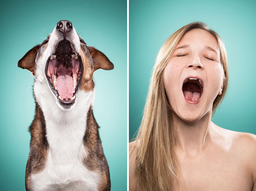 duenos-imitando-cara-perros-ines-opifanti-21