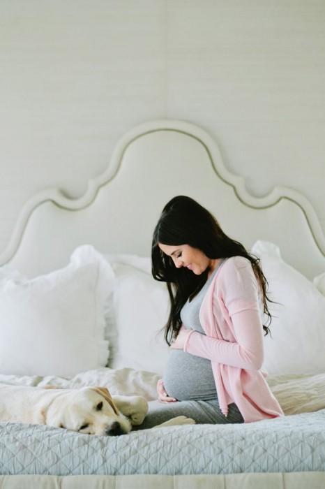 perros-y-embarazadas-1-466x700