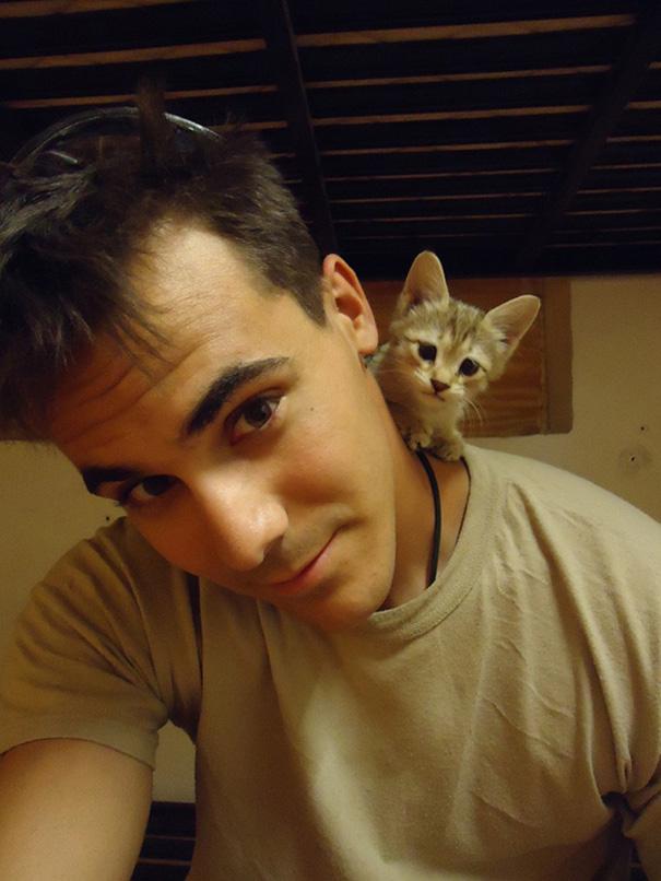 soldados-con-gatos-1