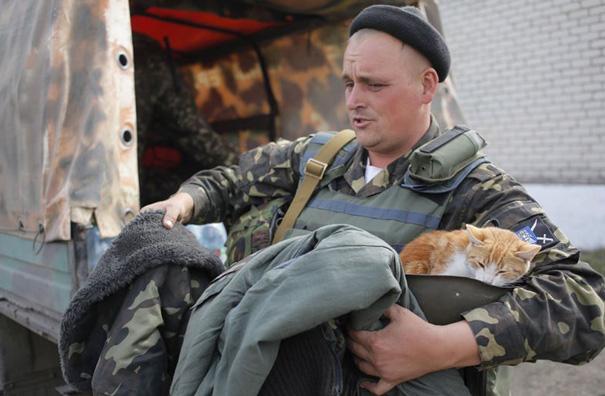 soldados-con-gatos-14