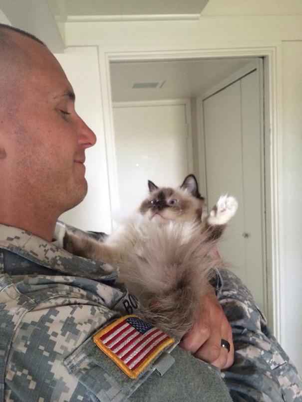 soldados-con-gatos-5