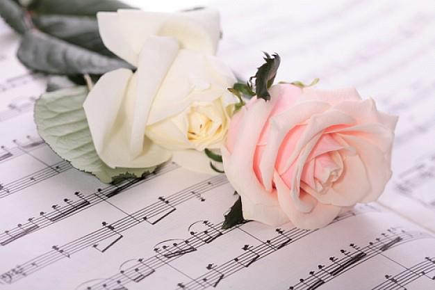 Flores-e-música