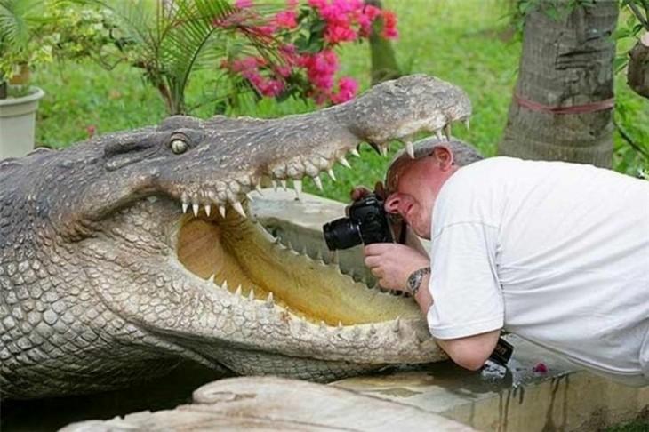 Fotógrafos-harán-lo-que-sea-por-tomar-una-foto-3-730x486