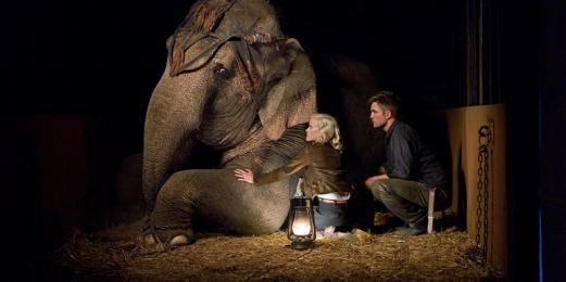 aguaparaelefantes