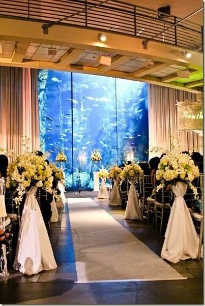 boda-acuario14