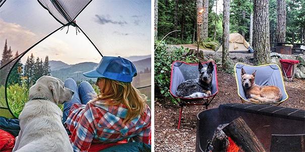 camping-with-dog-ryan-carter-118__605