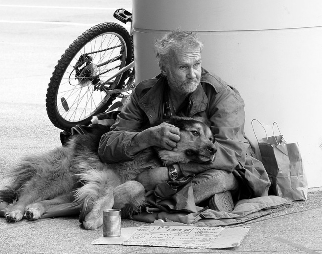 160555-R3L8T8D-650-homeless-dogs-and-owners-16