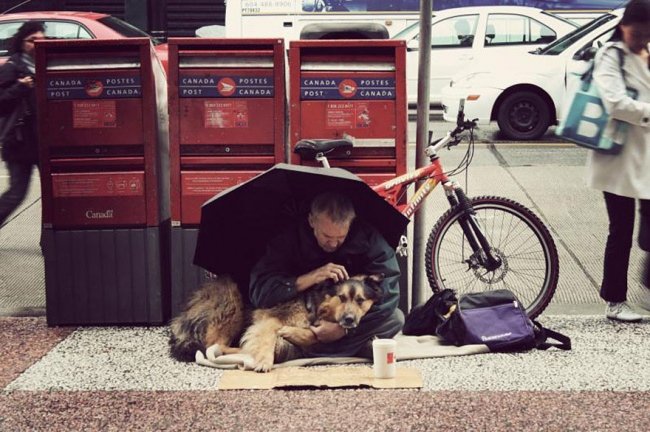 160655-R3L8T8D-650-homeless-dogs-and-owners-27