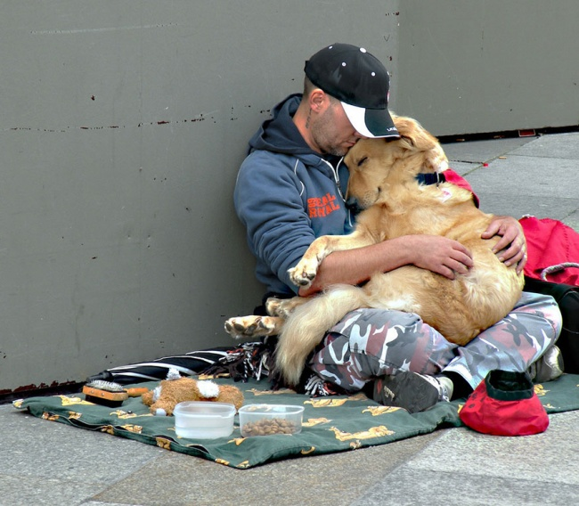 160755-R3L8T8D-650-homeless-dogs-and-owners-3