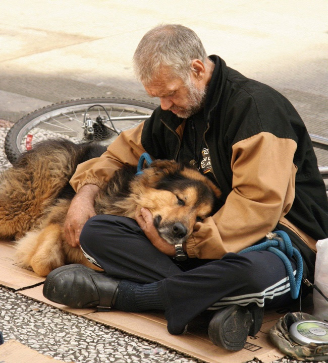 160805-R3L8T8D-650-homeless-dogs-and-owners-32