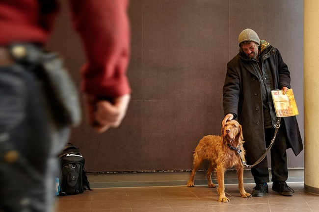 160955-R3L8T8D-650-homeless-dogs-and-owners-8