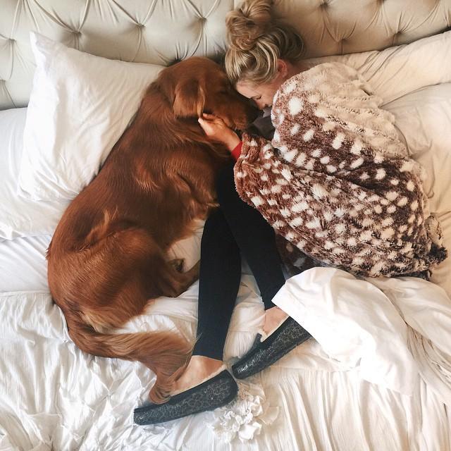 Cosas-que-sólo-los-amantes-de-los-perros-entenderan-15