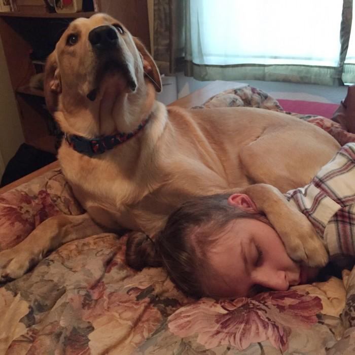 Cosas-que-sólo-los-amantes-de-los-perros-entenderan-51-700x700