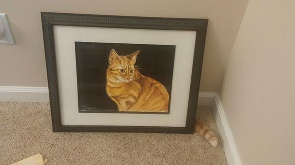 fotos-gatos-momento-justo-13
