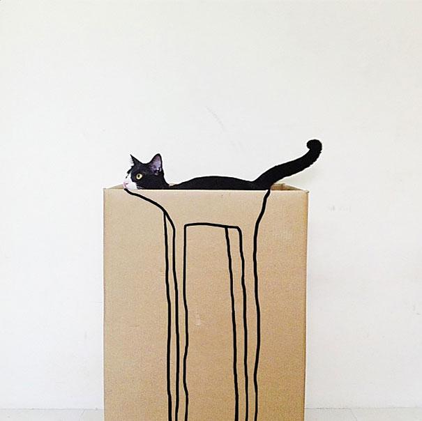 fotos-gatos-momento-justo-19