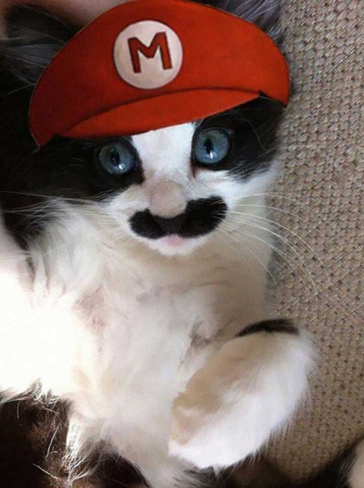 mario-cutestuff-co