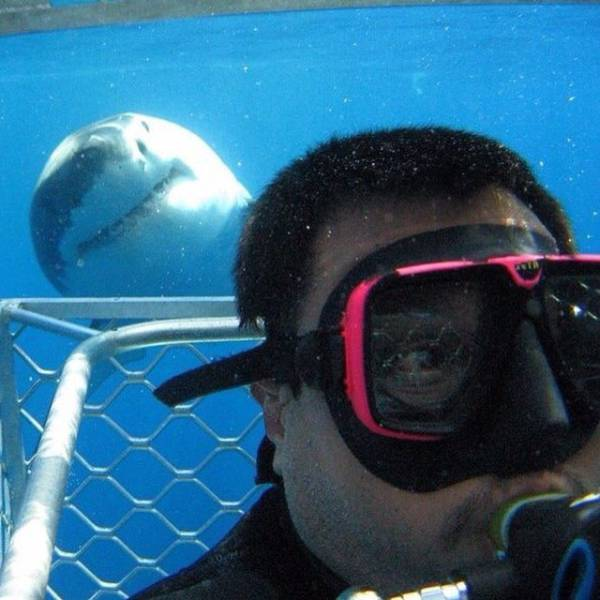these_extreme_selfies_are_a_little_insane_640_04