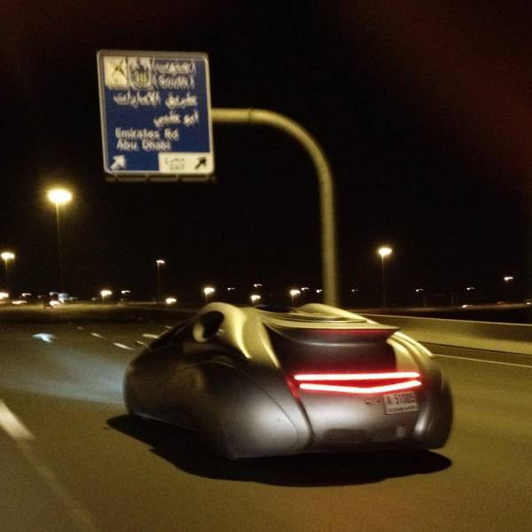 things_that_you_can_expect_to_see_only_in_dubai_640_06