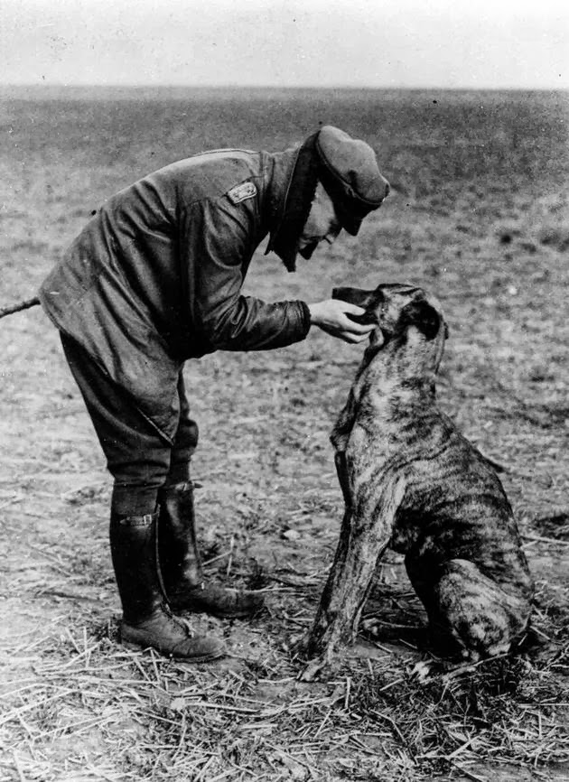 historical-photos-rare-pt2-red-baron-dog
