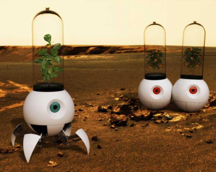 little-prince-robot6