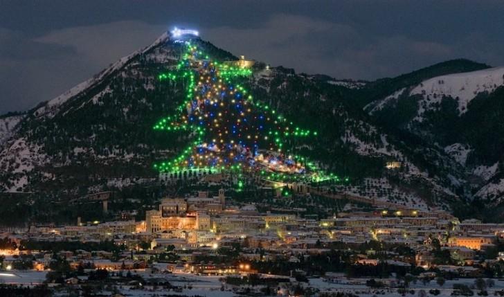11-Espectaculares-arboles-navidad-mundo-06-728x429