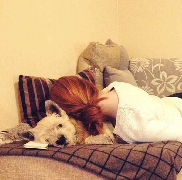 dormir-perro-foto-4