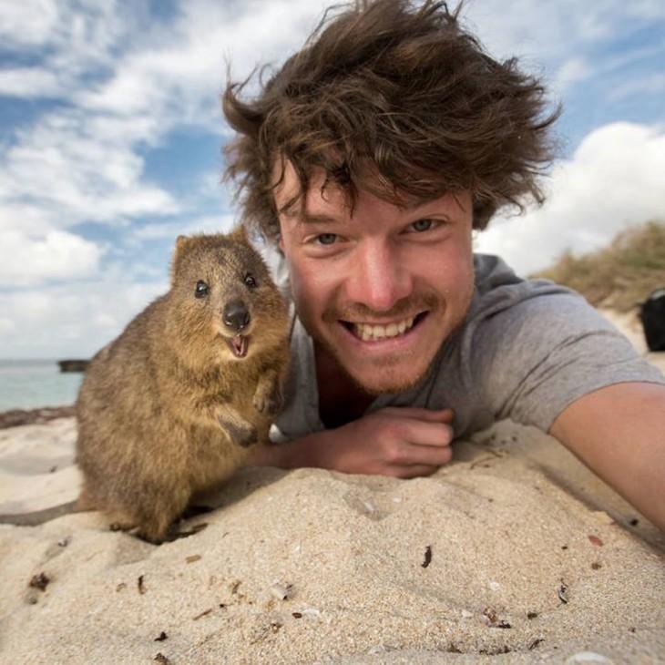 Hombre-se-toma-selfies-con-animales-1-730x730