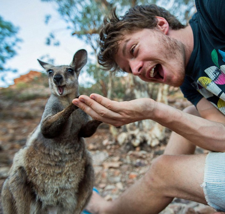 Hombre-se-toma-selfies-con-animales-730x694