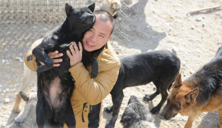 Millonario-Chino-rescata-perros-callejeros-1-730x421