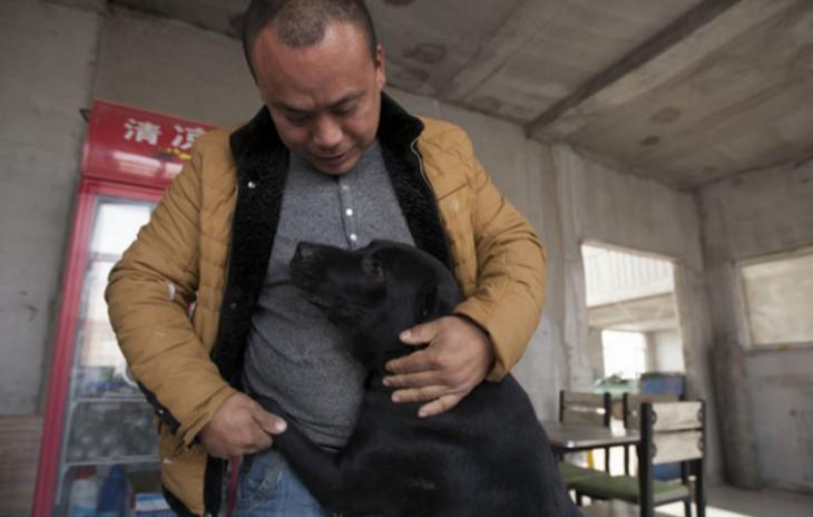 Millonario-Chino-rescata-perros-callejeros-3-730x464