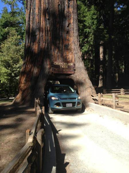 daily_picdump_2021_640_17