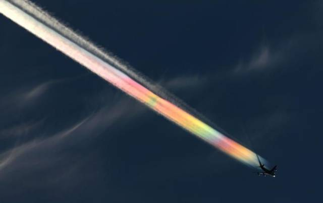 daily_picdump_2021_640_23