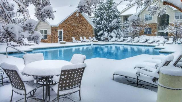 daily_picdump_2021_640_25