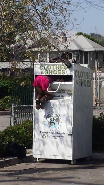 daily_picdump_2021_640_49