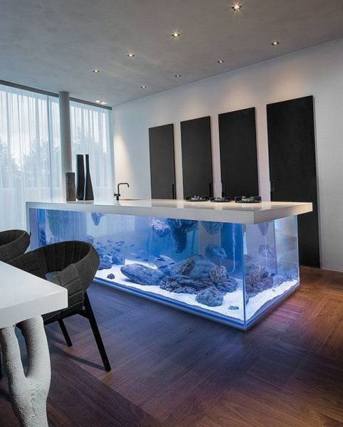daily_picdump_2021_640_55
