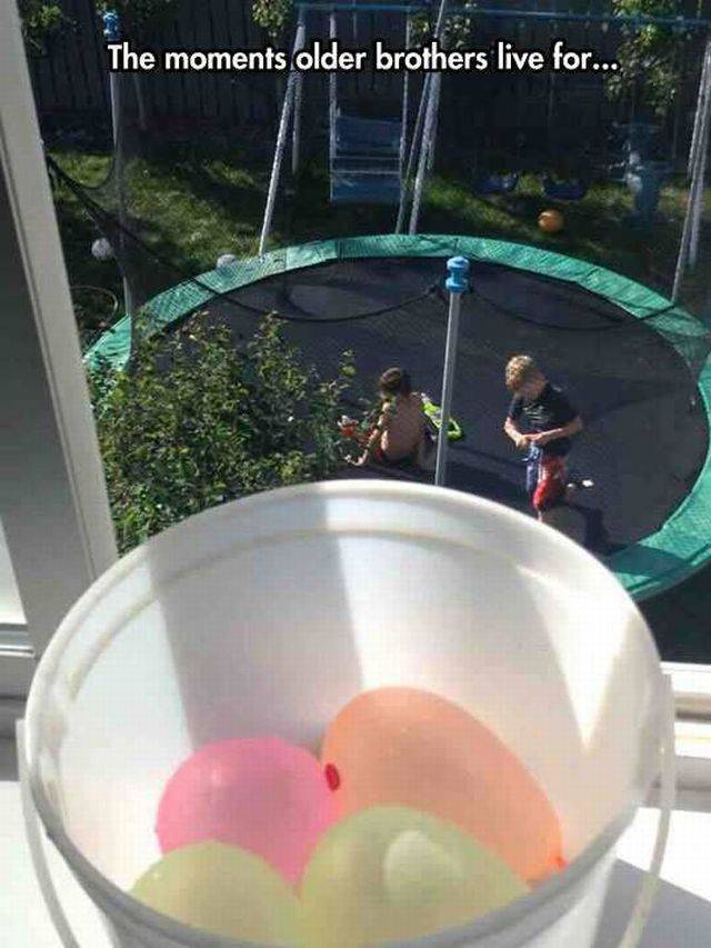 daily_picdump_2021_640_high_11