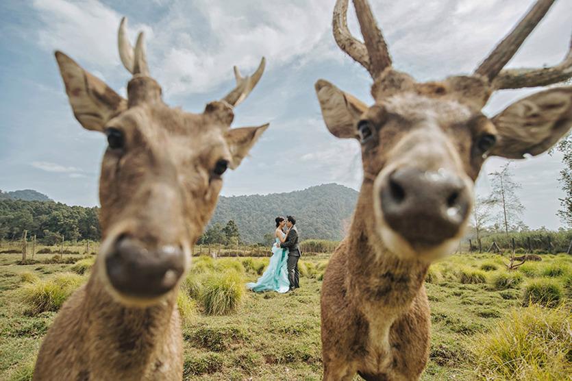 funniest_wedding_photos_of_2015-20
