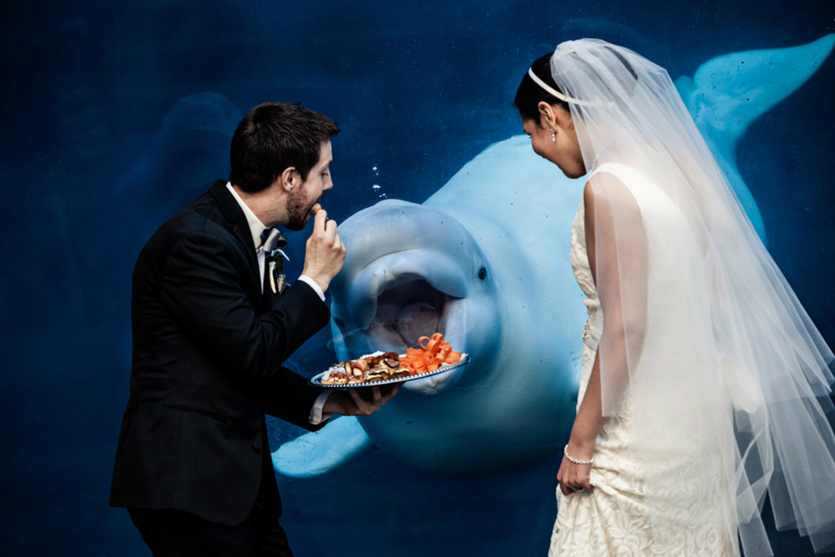 funniest_wedding_photos_of_2015-24