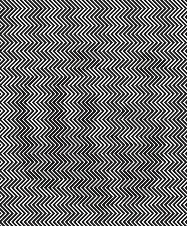 ilusionopticaosopanda-XxXx80